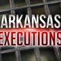 Timeline of Execution Lawsuits