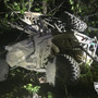 1 killed, 1 seriously injured in Maine ATV crash