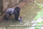gorilla with kid.PNG
