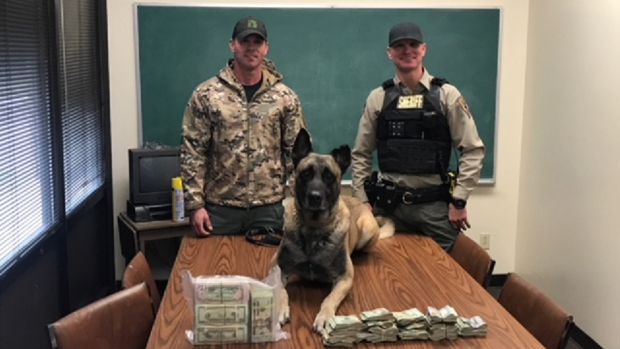 "The Fayette Co. Sheriff's Department's K9 ""Lobos"" gave 'positive alert' outside the SUV and then located $40,000 in cash vacuum sealed inside a large suit case inside the vehicle. A passenger,{&amp;nbsp;}Alvaro Luis Chaves of Pharr, Texas, was arrested and charged with money laundering.{&amp;nbsp;}(Photo: Courtesy of  Fayette County Sheriff's Office)<p></p>"