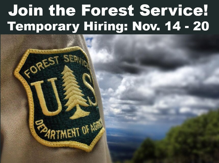 Temp hiring for 2018 (courtesy of U.S. Forest Service)<p></p>