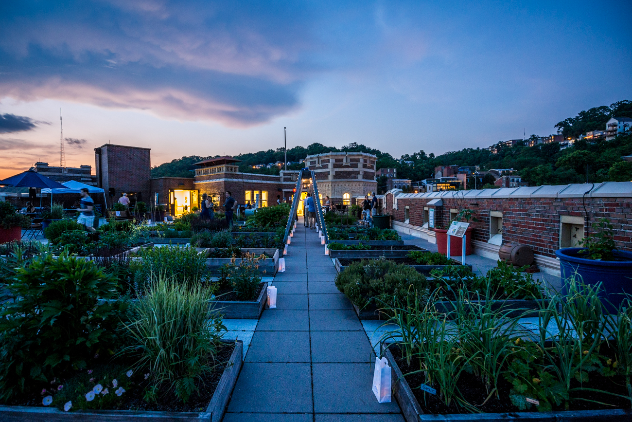 The rooftop garden is normally used as a classroom to teach students gardening, math, science, and literacy skills using a hands-on curriculum. Light Up Rothenberg's ticket sales helped fund the continued maintenance of the school's rooftop garden. / Image: Catherine VIox // Published: 5.26.19