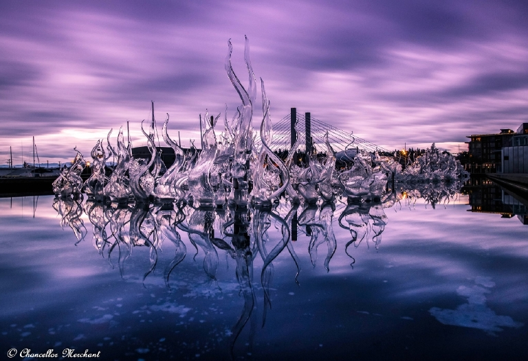 Endless Reflection  Photography