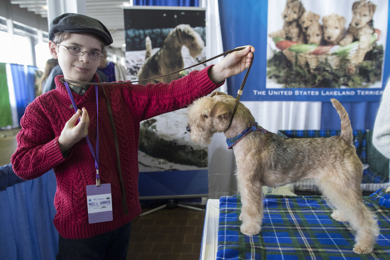 In this Saturday, Feb. 10, 2018, photo, Fenric Towell poses for a photo with his lakeland terrier Missy during the meet the breeds companion event to the Westminster Kennel Club Dog Show in New York. (AP Photo/Mary Altaffer)